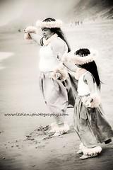 www.ninaaraica.com (Nina Araica Photography) Tags: heritage beach beautiful beauty hawaii hula culture dancer hawaiian wahine kamaaina weddingphotography tileaf familyphotography kahiko tattoophotography olapa newbornphotography californiaphotographer ninaaraicaphotography ninaaraica hulaphotography