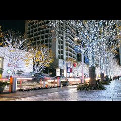 Giroppon Illuminated (tk21hx) Tags: trees japan night tokyo illumination roppongi roppongihills foveon keyakizaka colorefexpro dp1m dp1merrill sigmadp1merrill