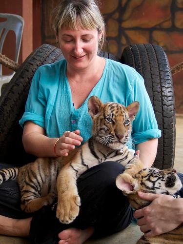 Jules and tiger cub at tiger temple.