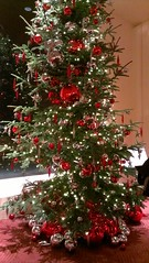 Davies Symphony Hall -- tree decorated by a classroom (delight.1027) Tags: sanfrancisco daviessymphonyhall