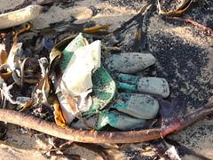 Missing Glove (Munki Munki) Tags: seaweed abandoned beach sand glove redcar coatham southgare seacoal