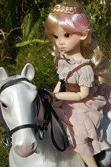 Tertia's White Horse (Emily1957) Tags: tertia gracie nikon bridle braid plaits plait elf ears pink nikond40 light naturallight meimeibody toy toys doll dolls horse whitehorse toyhorse bjd resin kayewiggs fairy