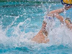 28191375 (roel.ubels) Tags: jong oranje nederland holland duitsland deutschland sport topsport waterpolo 2016 oefenwedstrijd alphen aan de rijn aquarijn