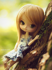 Summer in Her Hand (Saga) Tags: dal full custom pullip groove obitsu23 obitsu 23 doll girl repaint faceup makeover mikiyochii mikiyo blonde blond hair wig green eyes cute lovely pretty sweet young lady teen teenager toy asian saga sagelith lila wood tree moss trees nature log outdor outdoors forest blue dress flower white ribbon necklace dreamy mellow sun shine warm peaceful calm daydream