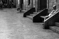 Lonely Man with his Dog (Sascha Holznagel) Tags: urbanlife blancoynegro people catedraldevalncia filmnoir valencia monochrome streetphotography canoneos600d schwarzweis blackandwhite spanien canonef50mmf14 bw street streetfotografie bn aislado einsamkeit loneliness espaa spain perro dog hund
