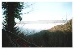 (Yosushie) Tags: nikonfe film nature landscape trees mist sky