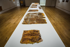 Tejas Verdes: I was not there - Installation Photos (Birkbeck Media Services / Dominic Mifsud) Tags: 3june15july2016 birkbeckuniversityoflondon chile chileanartist liviamarin margaritapalacios tejasverdesiwasnotthere thepeltzgallery abstractrealistobjects artinstallation collaborativeproject exdetentionandexterminationsites exhibition itinerantexhibition materialremains representingviolence traces london uk gb