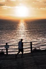 _DO14901 (Edoardo Marino) Tags: palos pv palosverdes san pedro california sunset park ocean sun light outdoor shoot people silhouette tamron tamron85 85mm nikon nikkor 20mm wideangle lightroom edoardomarino marinoedoardo dodi d810 birds sky clouds beauty colors