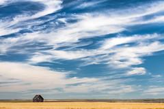 Big Sky (ScottBennie) Tags: farmhouse blue wheatfield landscape sky farming canada scenic roadtrip saskatchewan outdoor rural scenery clouds prairie