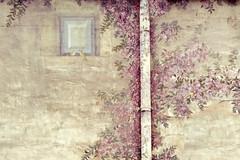 Trampantojo (Helena de Riquer) Tags: trompelil trampantojo deceivetheeye mur paret wall parede parete pared hotelmasdetorrent hotel torrent provinciadegirona helenaderiquer 2016 texture textura topf25 art arte mural pintura buganvilla bougainvillea topf50 interestingness topf75 topf100 100faves sony carlzeiss sonydschx300 catalunya catalua catalonia catalogne