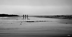 Annimos (ZAP.M) Tags: playa siluetas contraluz flickr nikon nikond5300 zapm mpazdelcerro bolonia cdiz andaluca espaa