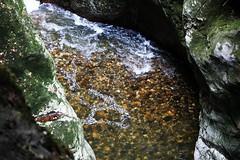 Gorges du Fier (Kusanar_NX) Tags: gorges fier savoie nx500
