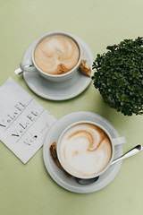 Velvet Caf (M. Klasan) Tags: cafe coffee cup white green plant table outdoor shop relax two