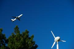 (Torasan Photography) Tags: airlines airport aviation daytime hnd haneda jal japan japanairlines kanagawa kawasaki outdoor place rjtt structure time tokyointernationalairport transportation windmill         jp