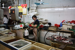 Fish stalls at the market in Shanghai, China (mbphillips) Tags: shanghai   huangpu   market  yongshouroad sigma1835mmf18dchsm canon450d  mbphillips asia