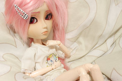 Calooor~ (mymuffin_15) Tags: pink dal william can wig pullip rosita damian mian isul obitsu taeyang