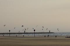 Rotterdam 2011 088 (D-Byte) Tags: kite beach strand scheveningen nederland solbeach nld provinciezuidholland