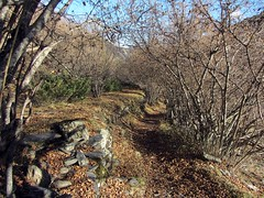 Valle del ro Escrita Espot (teonewman) Tags: de valle vall daneu aneu