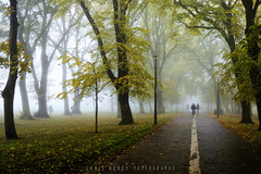 Bike Path (Chris Rubey) Tags: uk autumn winter fall nature leaves silhouette landscape scotland edinburgh shadows seasons fineart foggy coldweather themeadows nikond800 chrisrubey