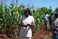 stakeholdermeeting-kisumu(2-3June2005) 001