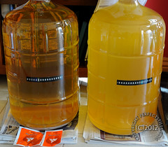 Carboy of Pinot Grigio Cleared! Finally! (PerfectStills) Tags: blanc glenveigh ireland meath navan youngs carboy whitewine wine comeath 2012 d700 nikon royalcounty airlock boynevalley boynewinery cloudy ferment hazy kenridge must nikkor november perfectstills winekit winemaking 23litre 50mm14g 6week cork marlborough newzealand classic fermentation sauvignonblanc showcase