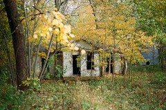 foreboding (losthalo) Tags: trees house abandoned home danger fear haunted nervous isolated shaking evilspirits