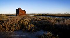 And loud that clarion voice replied, Excelsior! (Laszlo B) Tags: nikon adelaide southaustralia shipgraveyard outerharbour muttoncove excelsiorwreck