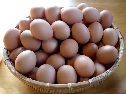卵食べ放題