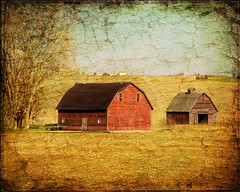Old Friends (keeva999) Tags: autumn painterly texture abandoned rural colorful farm country rustic barns iowa d3200 memoriesbook kerstinfrank
