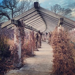 Minnehaha Walkway (Nate Eul) Tags: blue cold fall nature leaves minnesota dead minneapolis arches walkway chilly minnehaha minnehahafalls whatdoyoucallthesethings roofwithnoshingles