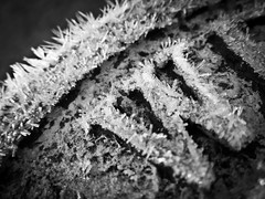 Day 334 of 366 Winters Here! (Chris Willis 10) Tags: winter white black ice monochrome photo frost w cc growth letter challenged 366 creatively creativelychallenged photo366