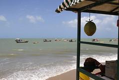 Maxaranguape/RN (Ricardo_ Lima) Tags: travel brazil tourism rio brasil natal grande do leisure turismo norte guia prais coth supershot destinos worldcup2014 northheasternbrazil