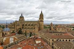 Salamanca desde el cielo (Gonzalo y Ana Mara) Tags: anamara catedral salamanca canonef1740mmf4lusm canoneos7d catedralnuevadesalamanca gonzaloyanamara