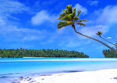 Dreamstime (divinumphoto) Tags: ocean blue shadow sea vacation sky sun white reflection tree beach water clouds swim french island hawaii polynesia sand holidays warm turquoise south relaxing sunny twinkle lagoon palm dreaming frond tropical romantic lonely recreation tahiti isle hang feelings bask