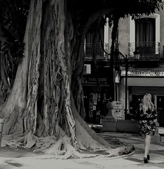 Girl under a tree #dailyshoot #Alicante (Leshaines123) Tags: city tree monochrome spain alicante spanish thorpe 365 denis dailyshoot me2youphotographylevel1