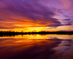 Sunset in the Rice Fields of the Sacramento Valley (Anthony Dunn Photography) Tags: california sunset water field reflections rice centralvalley sacramentovalley