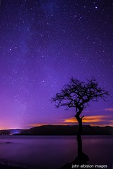 milky way above lone tree (john&mairi) Tags: longexposure tree night nightsky loch lochlomond lonetree milkyway millarochy millarochybay