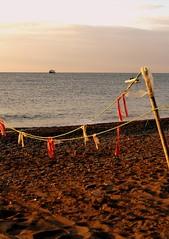 -  (AjPetrik) Tags: sea summer black mountains beach seaside holidays crimea woda ukraina soce zachd wakacje yayla krym     plaa  wschd    karabi morzeczarne  sonya230  rybaczie zotegodziny