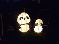 #illuminasia    #autumn (Mr. Happy Face - Peace :)) Tags: illuminations lights colors lumen lux luz light luce licht  lumire  yyc art2016 solar panda chinese