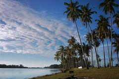 DSC_0088-2 (mohdhanafiah) Tags: blue sea cloud landscape coconut laut kitlens malaysia kuala awan kelapa terengganu kereta biru sungai muara pokok lanskap setiu nikond40 kampungmangkuk mohdhanafiah afsdxnikkor1855mmf35f56gii