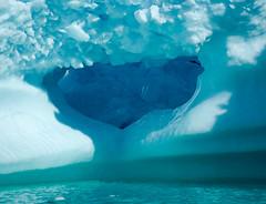Iceberg crystals (Jan Hilbrands) Tags: blue sea canada ice nature water closeup labrador pentax iceberg newfoundlandlabrador pentaxk10d