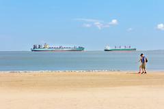IMG_5767.jpg (Dominik Wittig) Tags: zeeuwschvlaanderen spaziergang maerskline niederlande nieuwvlietbad schiff containerschiff nieuwvliet strandspaziergang
