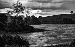 Thunder storm dance (George McNeill photography) Tags: 365shutterreleasechallengeblackandwhite blackandwhite countymonaghan ireland lake landscape lough monochrome nature nikond7200 outdoor stormclouds thunderstorm water
