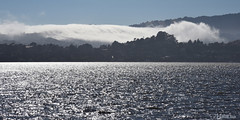 [Wave] view Mill Valley from Tiburon, California (miltonsun) Tags: landscape summer sea sanfrancisco lowfog highway1 wave ocean california westcoast foginsf pacificocean rollinghills mountains clouds sky
