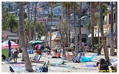 Avalon, Catalina Island (Sylvie Poitevin Photography) Tags: catalinaisland avalonbeach california socal beach