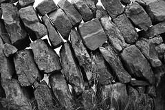 3372 - The Wall - (Dave's Oddity) Tags: nikon bw nb stone pierre wall mur burren irlande irland