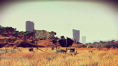 No Man's Sky (miky_magawolaz) Tags: nomanssky hellogames outpost
