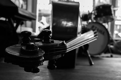 Beauty (Paco Mayoral) Tags: double bass contrabajo musica blancoynegro old duke