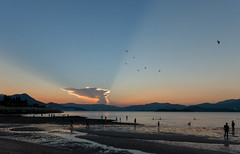 Freedom is... (edward.cheung) Tags: maonshan wukaisha hongkong hk outdoor sunset magichour bluesky burning rx100iii sony sea beach fly birds