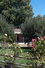 Oak Glen. (LisaDiazPhotos) Tags: lisadiazphotos apple orchard pickin picking autumn foliage oak glen california
